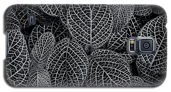 Galaxy S5 Case featuring the photograph Leaf Pattern by Wayne Sherriff