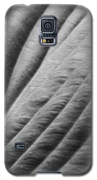 Leaf - Softness Galaxy S5 Case by Ben and Raisa Gertsberg