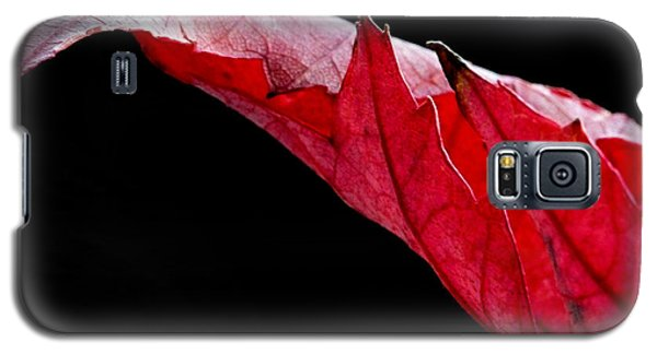 Leaf Study IIi Galaxy S5 Case