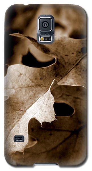 Leaf Study In Sepia IIi Galaxy S5 Case