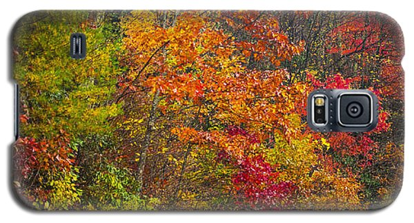 Leaf Tapestry Galaxy S5 Case