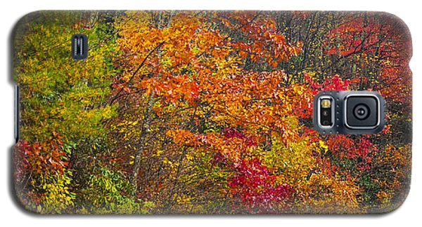Galaxy S5 Case featuring the photograph Leaf Tapestry by Rob Hemphill
