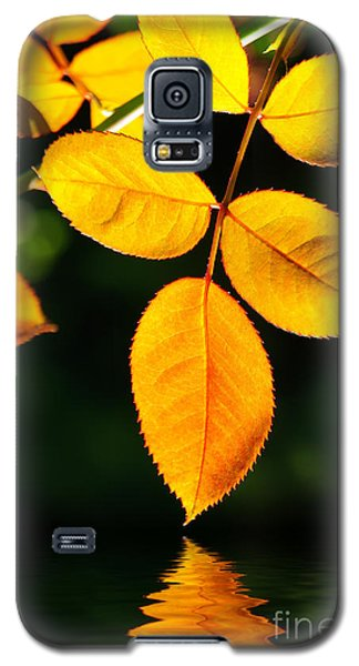 Leafs Over Water Galaxy S5 Case