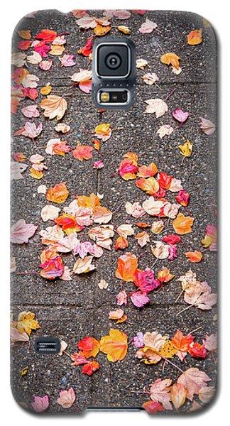 Leafy Autumn Walk Galaxy S5 Case