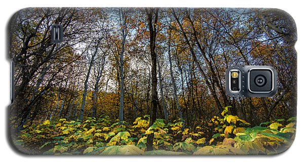 Leafy Yellow Forest Carpet Galaxy S5 Case