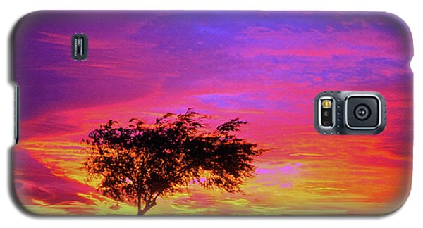 Leaning Tree At Sunset Galaxy S5 Case