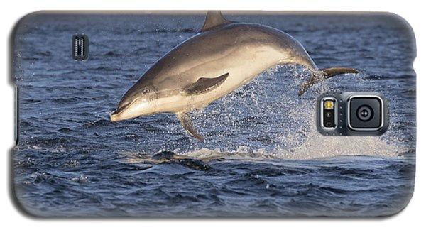 Jolly Jumper - Bottlenose Dolphin #40 Galaxy S5 Case