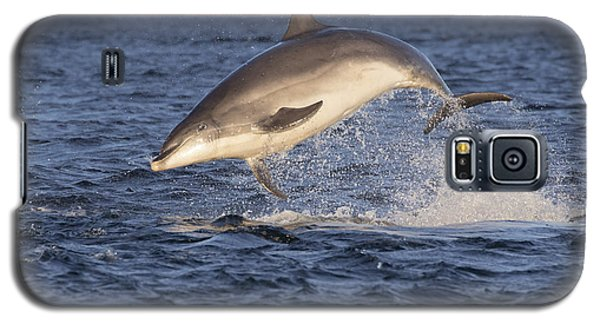 Jolly Jumper - Bottlenose Dolphin #40 Galaxy S5 Case