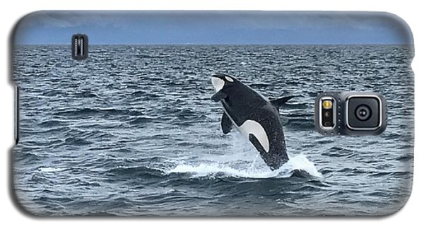 Leaping Orca Galaxy S5 Case