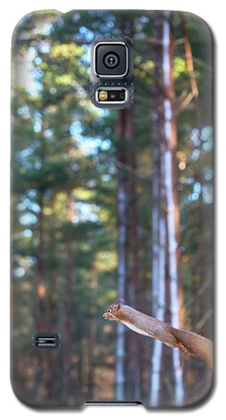Leaping Red Squirrel Tall Galaxy S5 Case