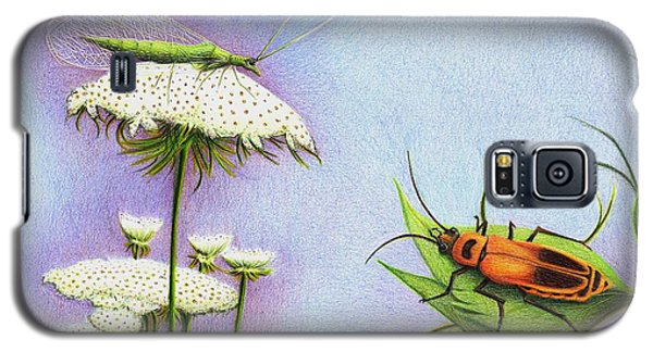 Galaxy S5 Case featuring the drawing Leather And Lace... For The Gardeners by Danielle R T Haney