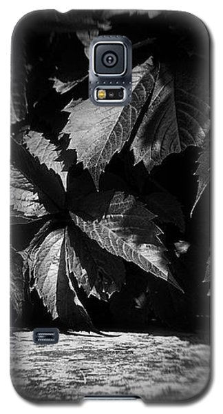 Leaves #9671 Galaxy S5 Case