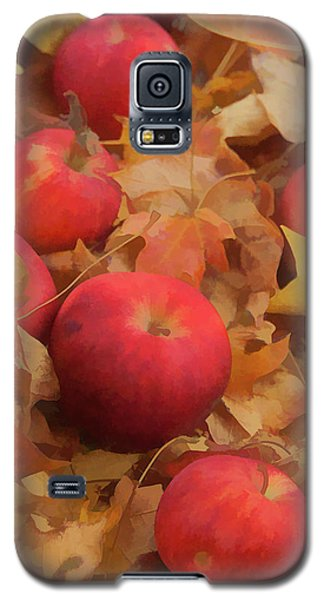Leaves And Apples Galaxy S5 Case by Michael Flood