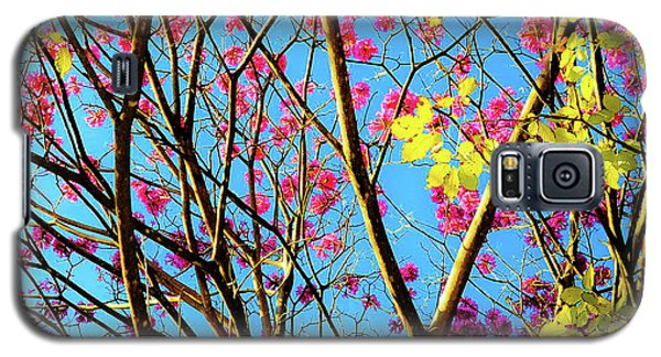 Leaves And Trees 980 Galaxy S5 Case