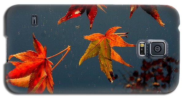 Leaves Falling Down Galaxy S5 Case