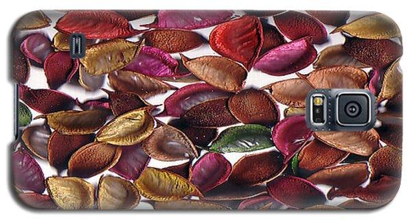 Leaves Galaxy S5 Case by Mirfarhad Moghimi