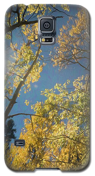 Leaves Of Fall Galaxy S5 Case