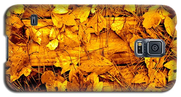 Leaves Of Sepia Galaxy S5 Case by Cathy Dee Janes