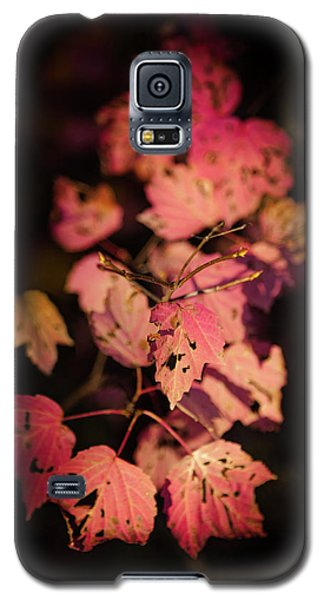Leaves Of Surrender Galaxy S5 Case by Karen Wiles