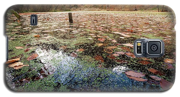 Leaves On The Lake Galaxy S5 Case