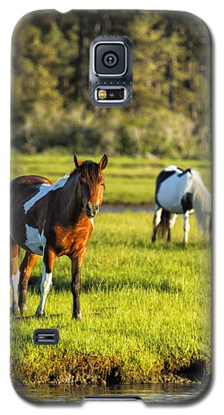 Leaving The Chincoteague Ponies Galaxy S5 Case