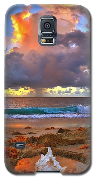 Left Behind - From Singer Island Florida. Galaxy S5 Case