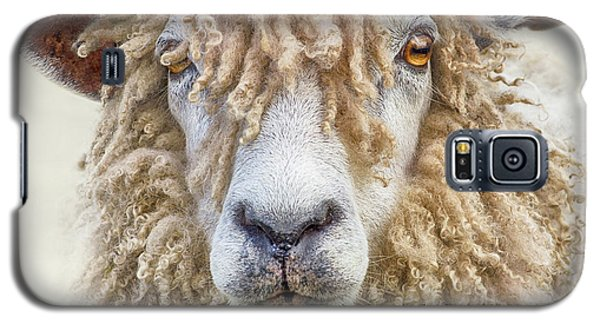 Leicester Longwool Sheep Galaxy S5 Case