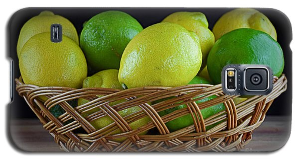 Lemon And Lime Basket Galaxy S5 Case