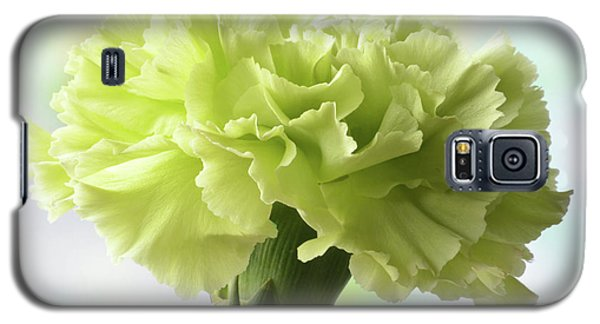 Galaxy S5 Case featuring the photograph Lemon Carnation by Terence Davis