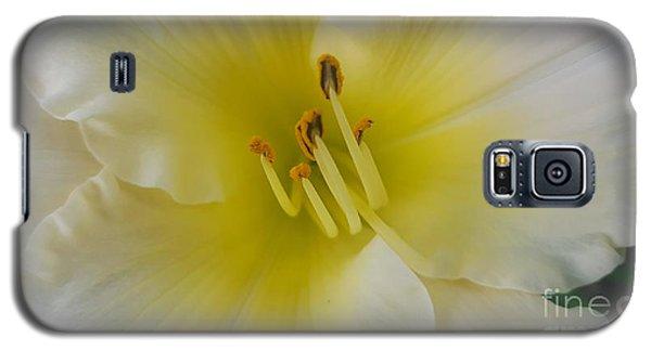 Lemon Daylily Galaxy S5 Case