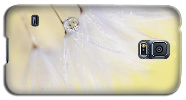 Galaxy S5 Case featuring the photograph Lemon Drop by Amy Tyler