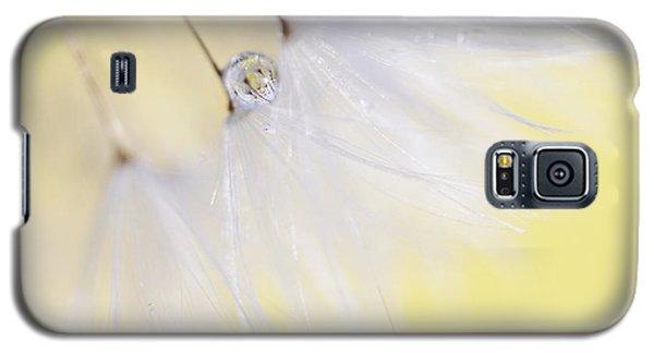 Lemon Drop Galaxy S5 Case by Amy Tyler