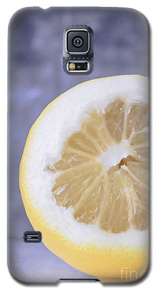 Lemon Half Galaxy S5 Case by Edward Fielding