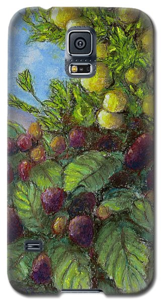 Lemons And Berries Galaxy S5 Case by Laurie Morgan