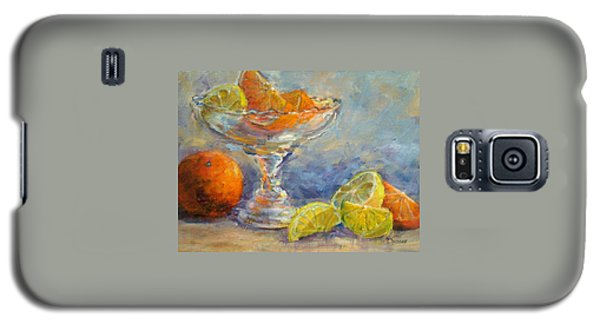 Lemons And Oranges Galaxy S5 Case