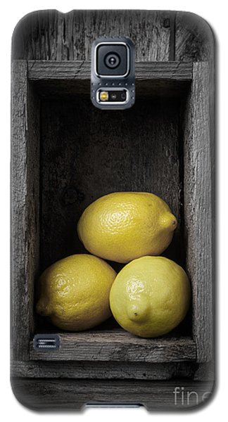 Lemons Still Life Galaxy S5 Case by Edward Fielding