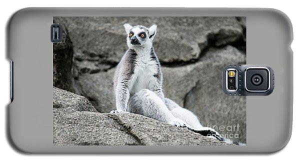 Lemur The Cutie Galaxy S5 Case