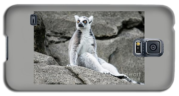 Lemur The Cutie Galaxy S5 Case