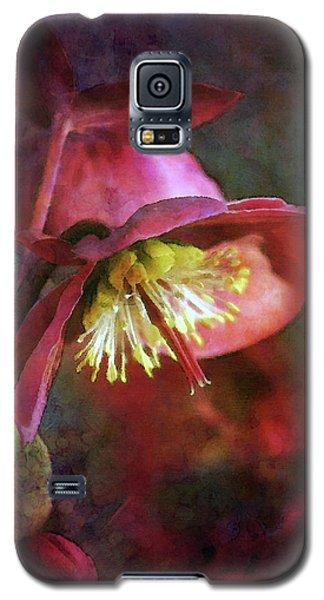 Lenten Rose Bowing To The Sun 8712 Idp_2 Galaxy S5 Case