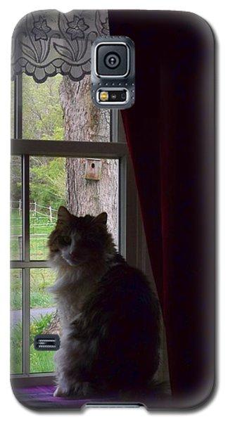 Leo In The Window Galaxy S5 Case