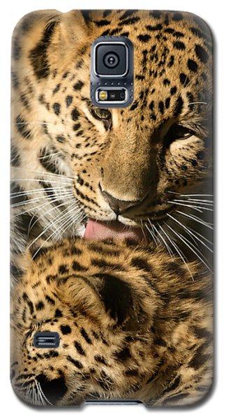 Leopard Cub Love Galaxy S5 Case