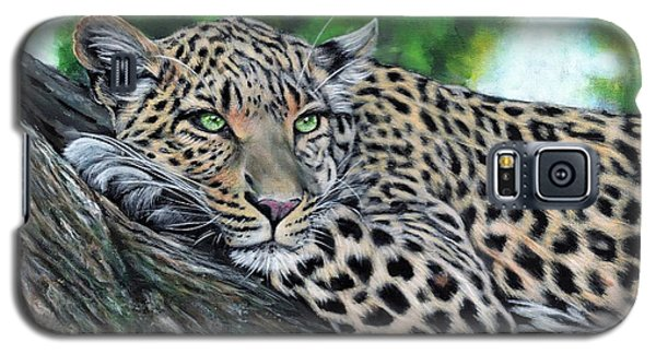 Leopard On Branch Galaxy S5 Case