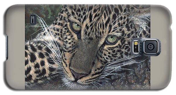 Leopard Portrait Galaxy S5 Case