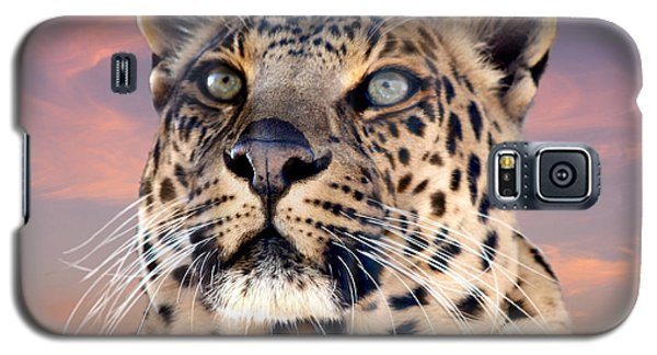Leopard Portrait Number 3 Galaxy S5 Case