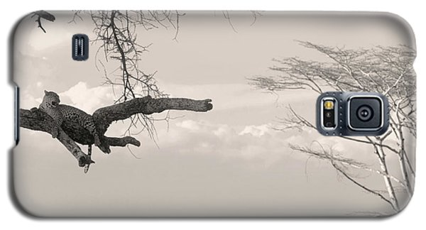 Leopard Resting On A Tree Galaxy S5 Case