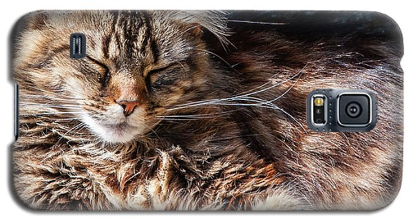 Let Me Sleep... Galaxy S5 Case