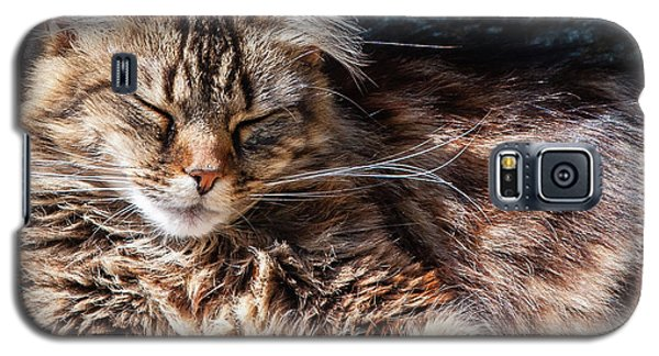 Let Me Sleep... Galaxy S5 Case