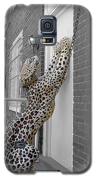 Let The Cat In Galaxy S5 Case