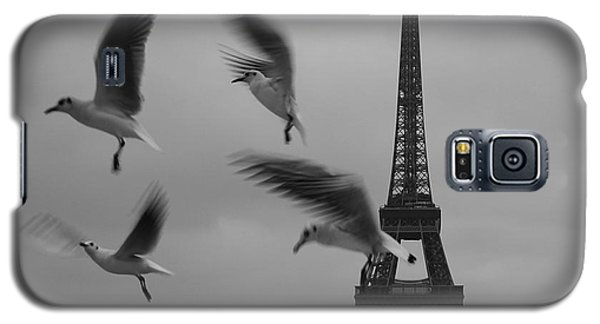 Galaxy S5 Case featuring the photograph Let Your Spirit Fly  by Danica Radman