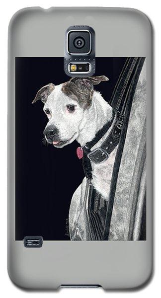 Let's Go Galaxy S5 Case